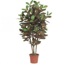 PIANTA ARTIFICIALE CROTON H125cm